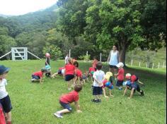 Grupos Abelha e Elefante em aula-passeio no Sítio
